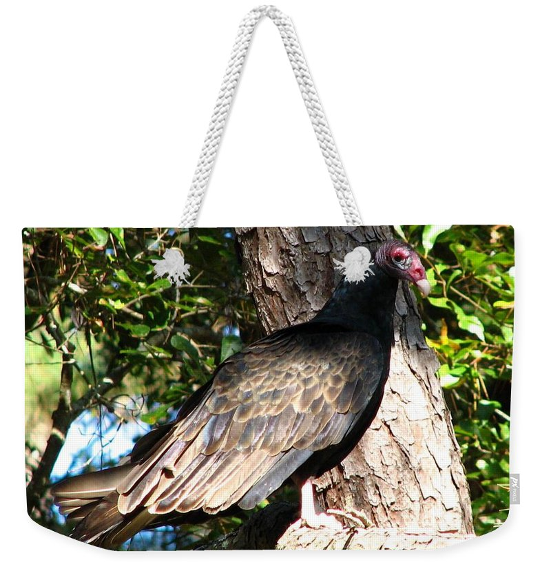 Turkey Buzzard Weekender Tote Bag featuring the photograph Turkey Buzzard by J M Farris Photography