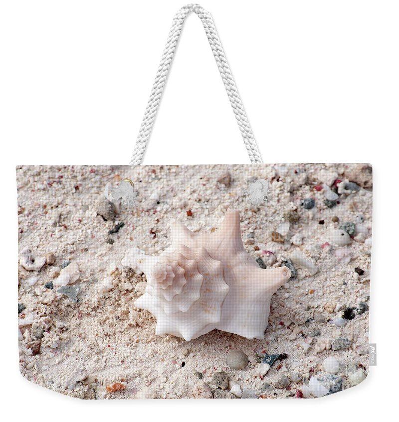 Shell Weekender Tote Bag featuring the pyrography Turks And Caicos Shell by Heather Fiedler
