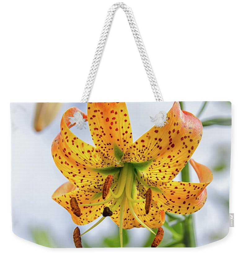 Blue Ridge Mountains Weekender Tote Bag featuring the photograph Turk's Cap Lily by Kristina Plaas