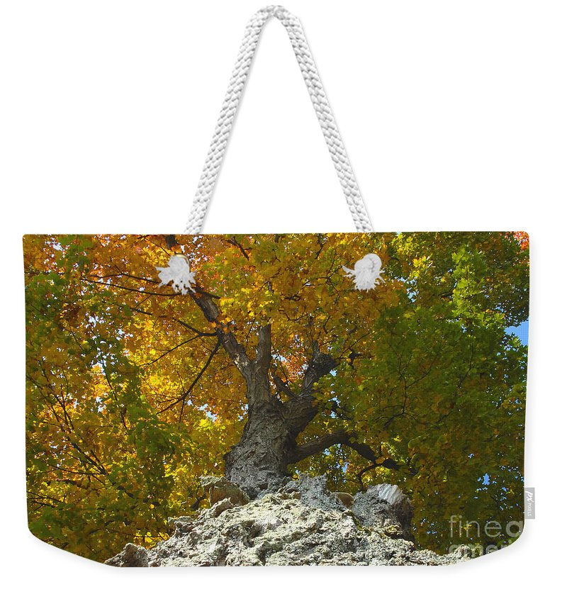 Fall Weekender Tote Bag featuring the photograph Turning Colors by David Lee Thompson