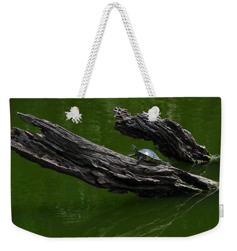 Art For The Wall...patzer Photography Weekender Tote Bag featuring the photograph Turtle Art by Greg Patzer