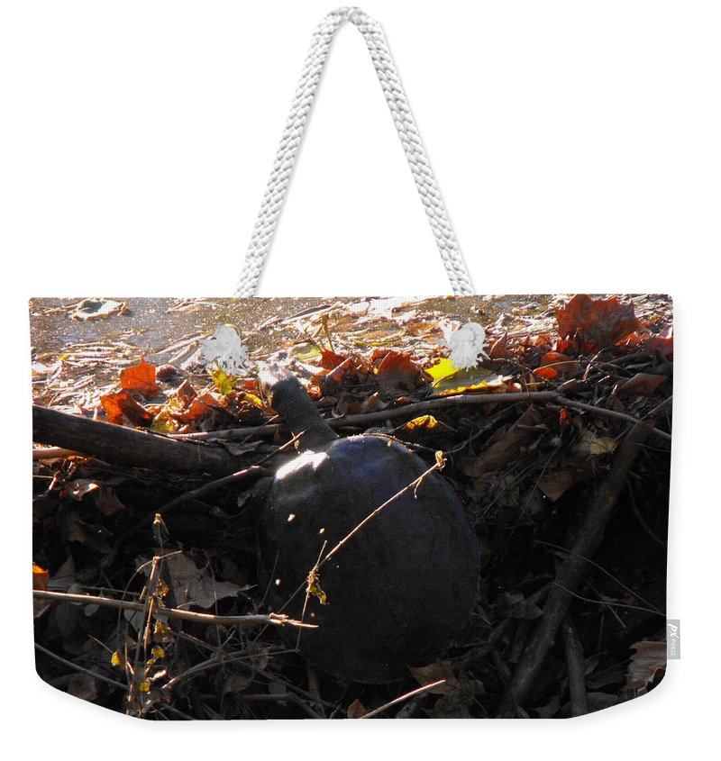 Turtle Weekender Tote Bag featuring the photograph Turtle At Deer Creek by Ginger Repke