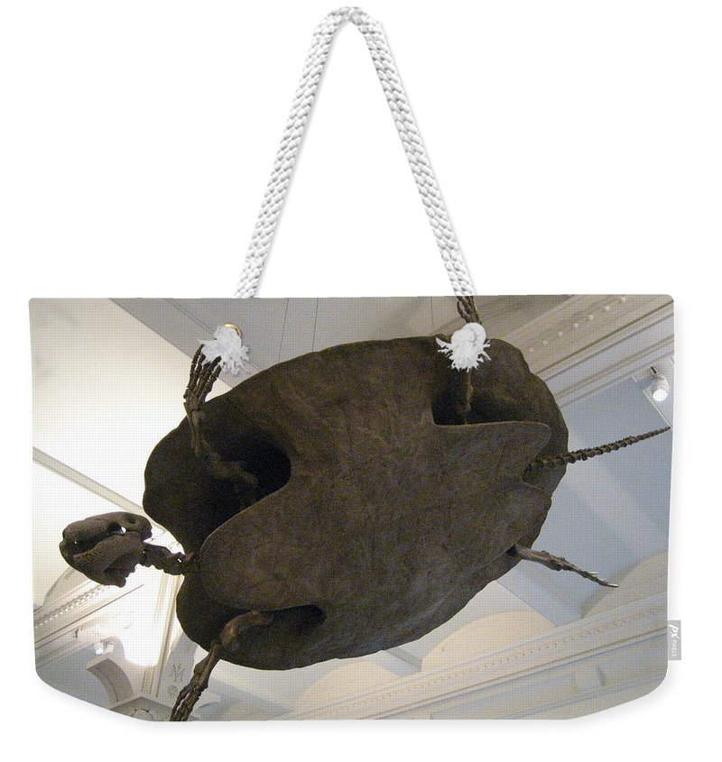 Turtle Weekender Tote Bag featuring the photograph Turtle by Brian McDunn