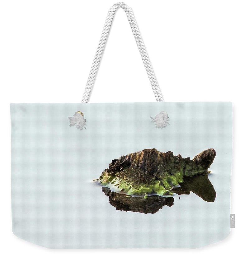 Turtle Weekender Tote Bag featuring the photograph Turtle or Mountain by Randy J Heath