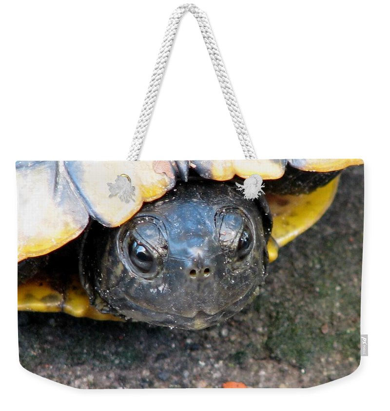 Turtle Weekender Tote Bag featuring the photograph Turtle Smile by J M Farris Photography