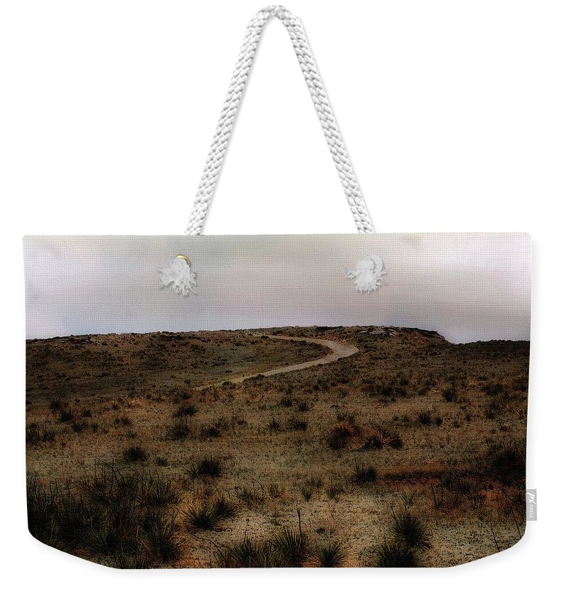 Colorado Weekender Tote Bag featuring the painting Twilight Grasslands by RC DeWinter
