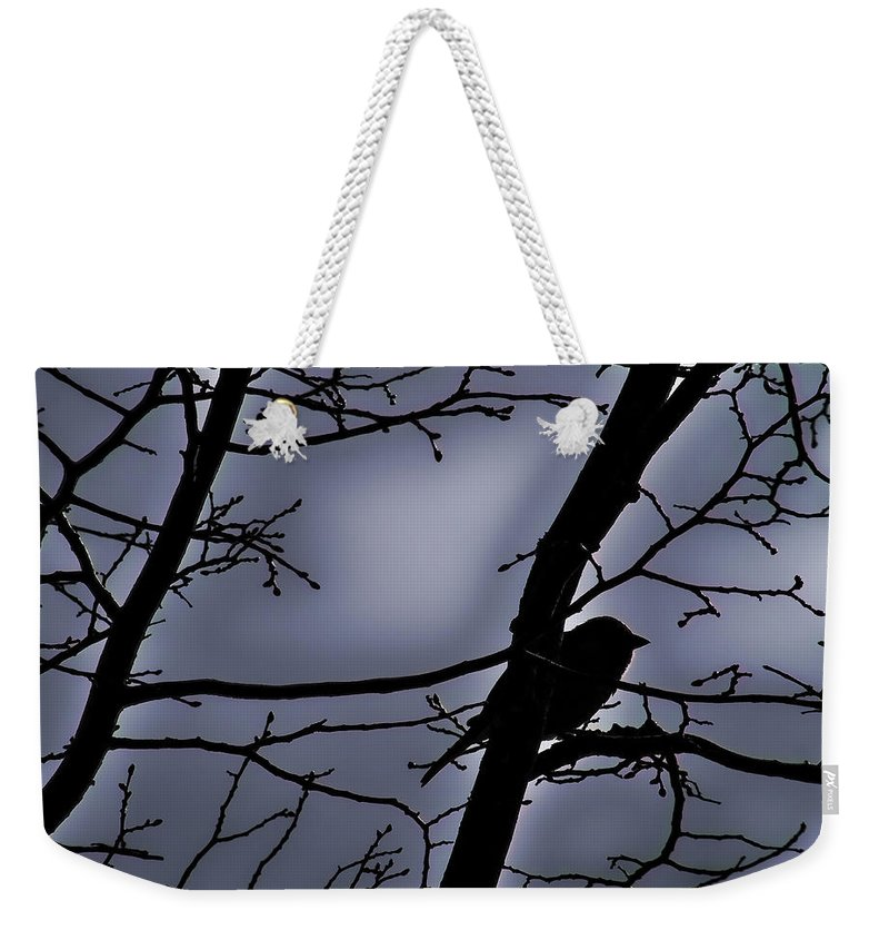 Night Weekender Tote Bag featuring the photograph Twilight by Lauren Radke