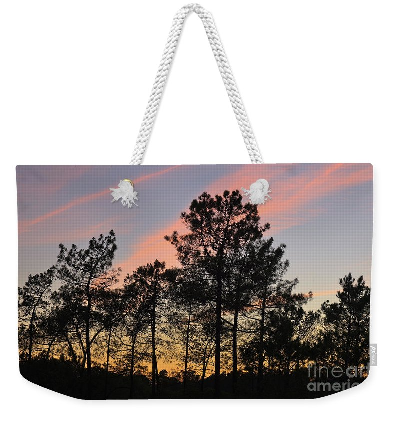 Trees Weekender Tote Bag featuring the photograph Twilight Tree Silhouettes by Angelo DeVal