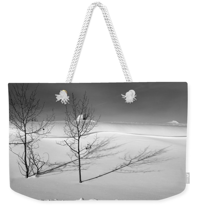 Nature Weekender Tote Bag featuring the photograph Twins by Skip Hunt