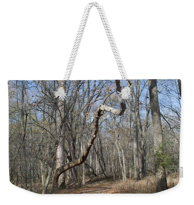Woods Weekender Tote Bag featuring the photograph Twisted by Linda Kerkau