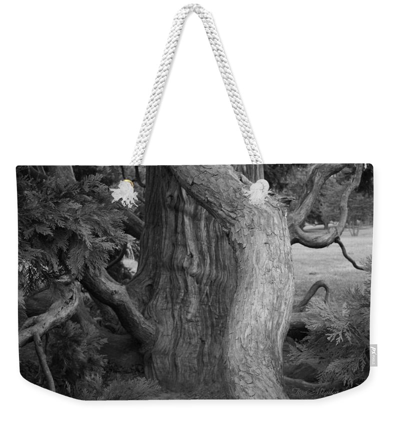 Tree Weekender Tote Bag featuring the photograph Twisted Old Tree by Tina Meador