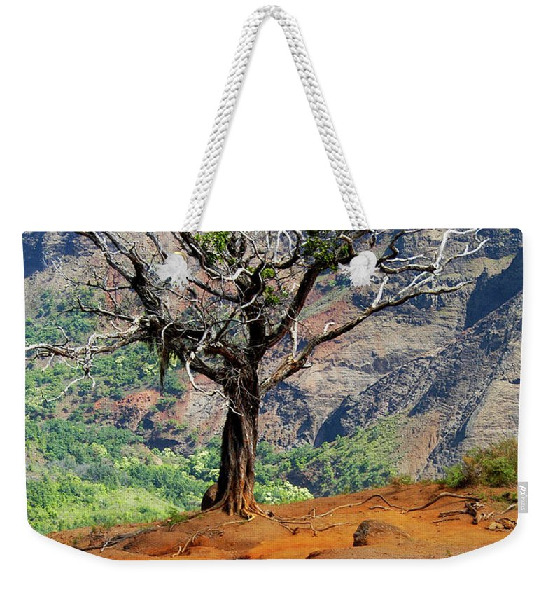 Tree Weekender Tote Bag featuring the photograph Twisted Tree, Wiamea Canyon, Kawai Hawaii by Michael Bessler