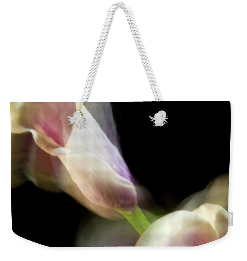 Color Weekender Tote Bag featuring the photograph Twisting Cala Lily One by Frederic A Reinecke