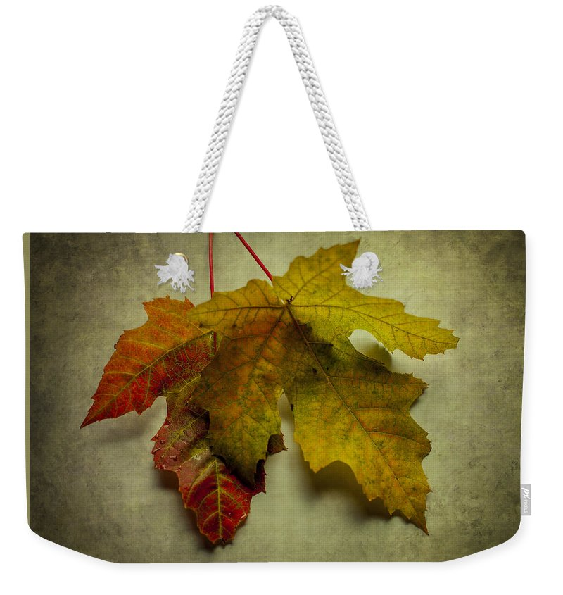 Terry D Photography Weekender Tote Bag featuring the photograph Two Autumn Leaves by Terry DeLuco
