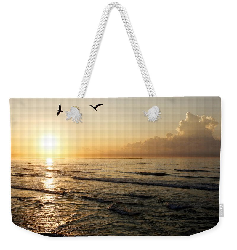 Beach Weekender Tote Bag featuring the photograph Two Birds At Breakast by Marilyn Hunt