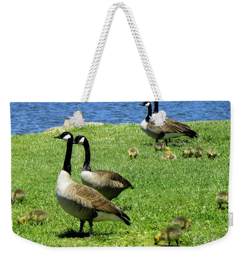 Geese Weekender Tote Bag featuring the photograph Two By Two by Sandi OReilly