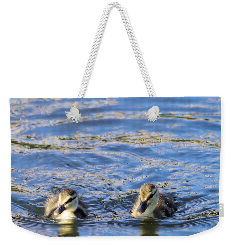 Bird Weekender Tote Bag featuring the photograph Two Ducklings by Jeff Swan