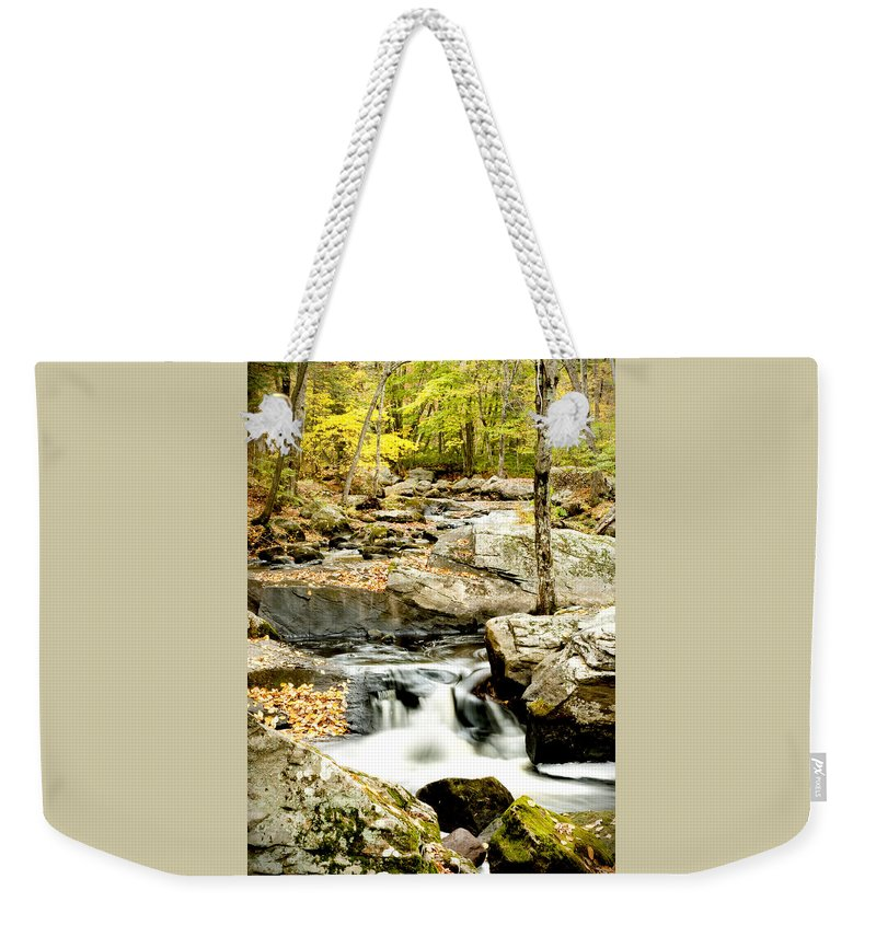 Woods Weekender Tote Bag featuring the photograph Two Falls by Greg Fortier