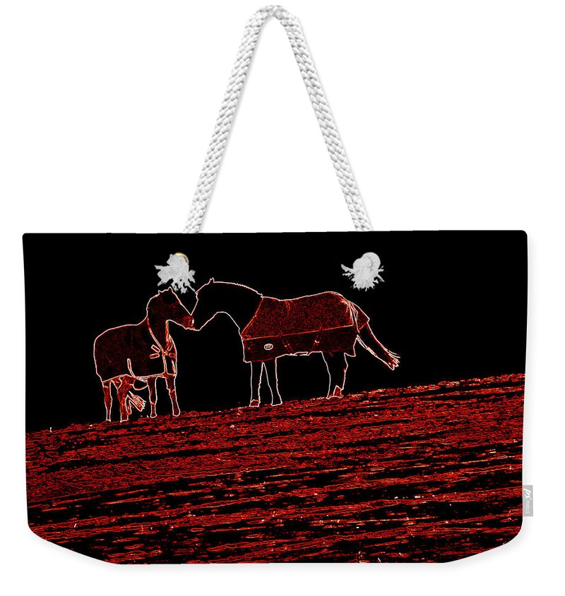 Horses Weekender Tote Bag featuring the photograph Two Horses by James Hill