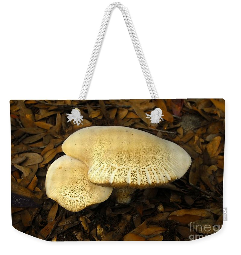 Mushrooms Weekender Tote Bag featuring the photograph Two Mushrooms by David Lee Thompson