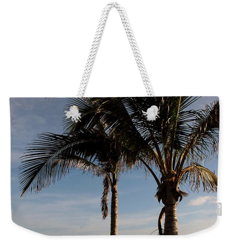 Palms Weekender Tote Bag featuring the photograph Two Palms And The Gulf Of Mexico by Susanne Van Hulst