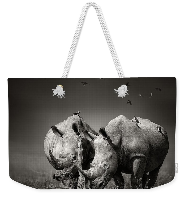 Rhinoceros Weekender Tote Bag featuring the photograph Two Rhinoceros With Birds In Bw by Johan Swanepoel