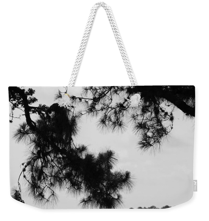 Walt Disney World Weekender Tote Bag featuring the photograph Two Ships That Pass... by Rob Hans