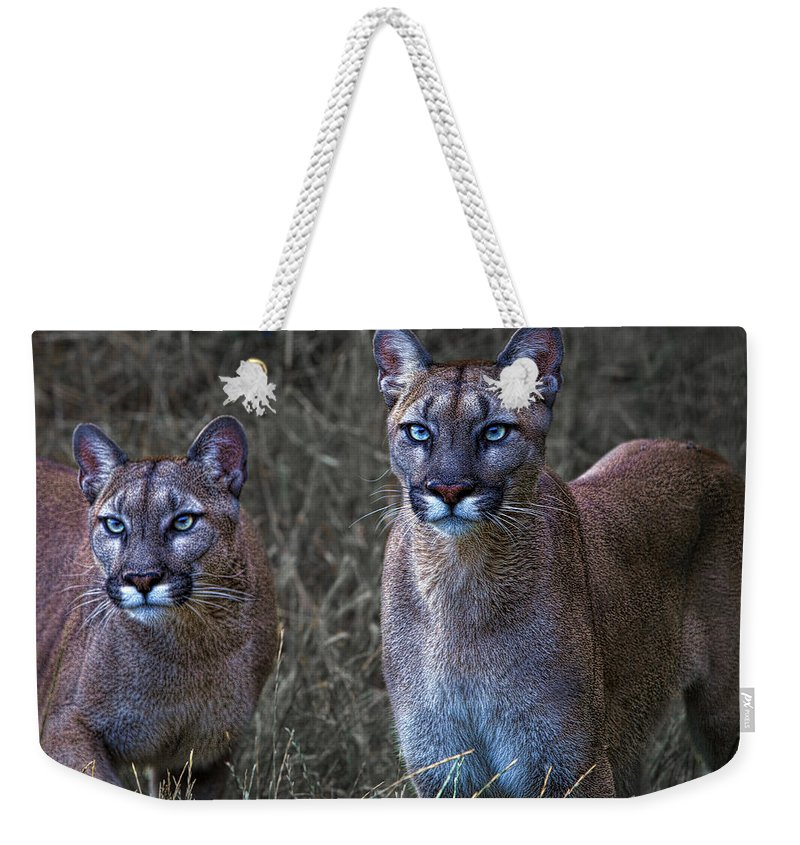 Sisters Weekender Tote Bag featuring the photograph Two Sisters by Chris Lord