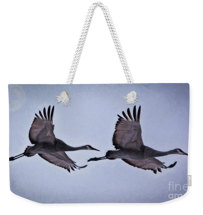 Nature Weekender Tote Bag featuring the photograph Two Under The Moon by Janice Pariza