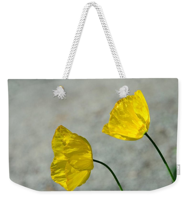 Blossoms Weekender Tote Bag featuring the photograph Two Yellow Blossoms by Lena Photo Art