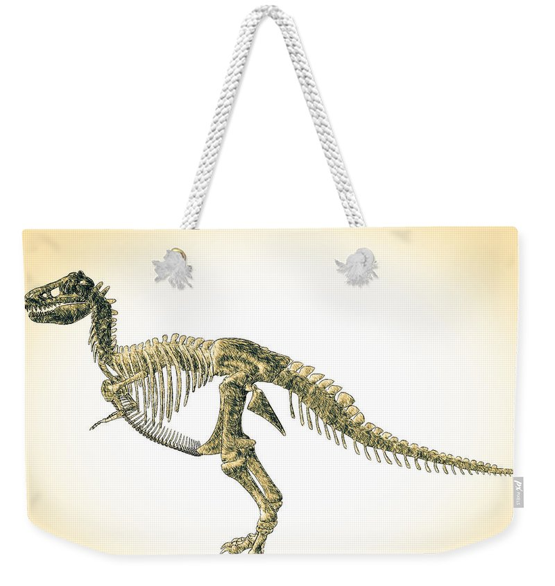 Biology Weekender Tote Bag featuring the digital art Tyrannosaurus Rex Skeleton by Bob Orsillo