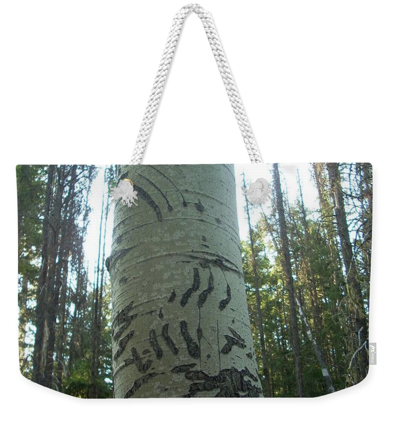 Bear Weekender Tote Bag featuring the photograph Unbearable by Sara Stevenson