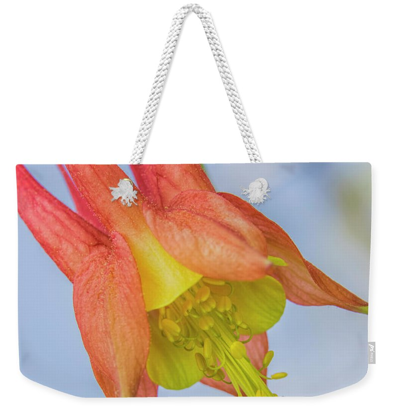 Wild Columbine Weekender Tote Bag featuring the photograph Under A Wild Columbine by Barbara Bowen