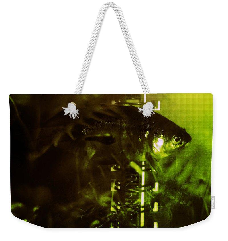 Goldfisg Weekender Tote Bag featuring the photograph Under The Water by Angel Ciesniarska