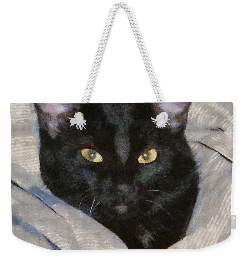 Cat Weekender Tote Bag featuring the painting Undercover Kitten by Jeffrey Kolker