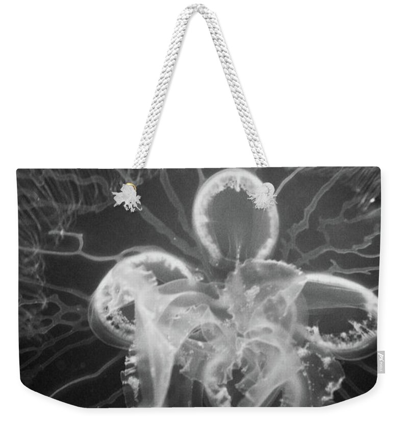 Moon Jelly Weekender Tote Bag featuring the photograph Underneath The Moon Jellyfish by Selena Wagner
