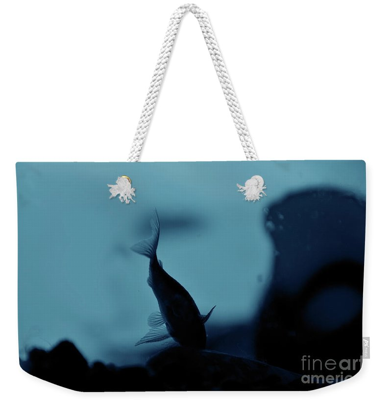 Underwater Weekender Tote Bag featuring the photograph Underwater by Ilaria Andreucci