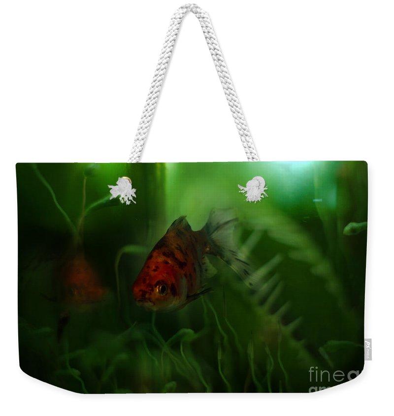 Goldfish Weekender Tote Bag featuring the photograph Underwater World by Angel Ciesniarska