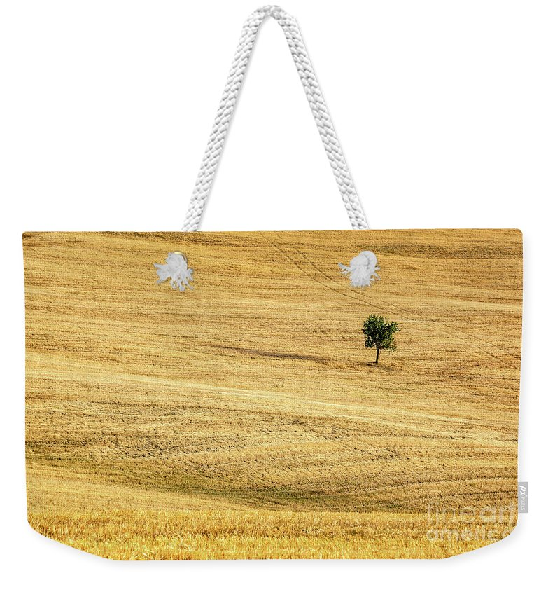 Tuscany Weekender Tote Bag featuring the photograph Unique by Delphimages Photo Creations