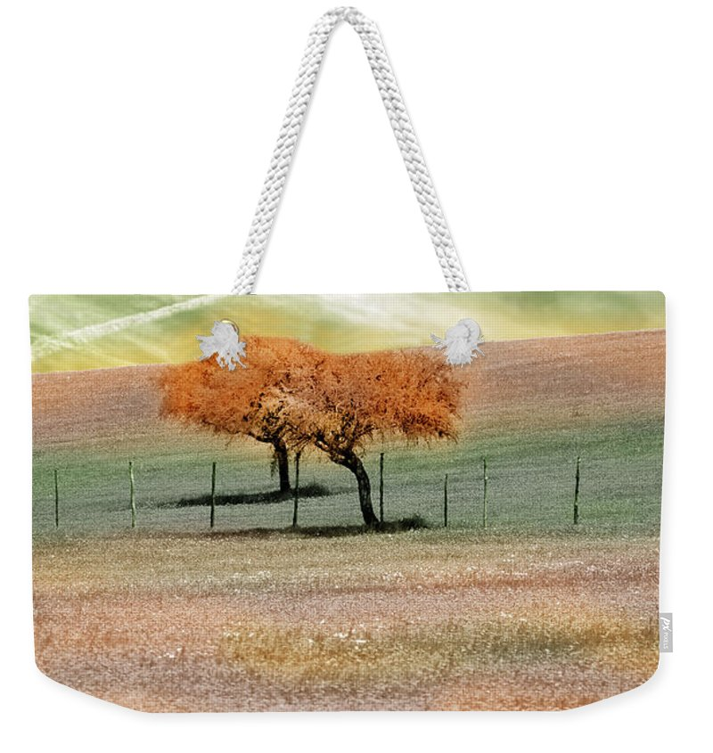Photograph Weekender Tote Bag featuring the photograph United by Munir Alawi