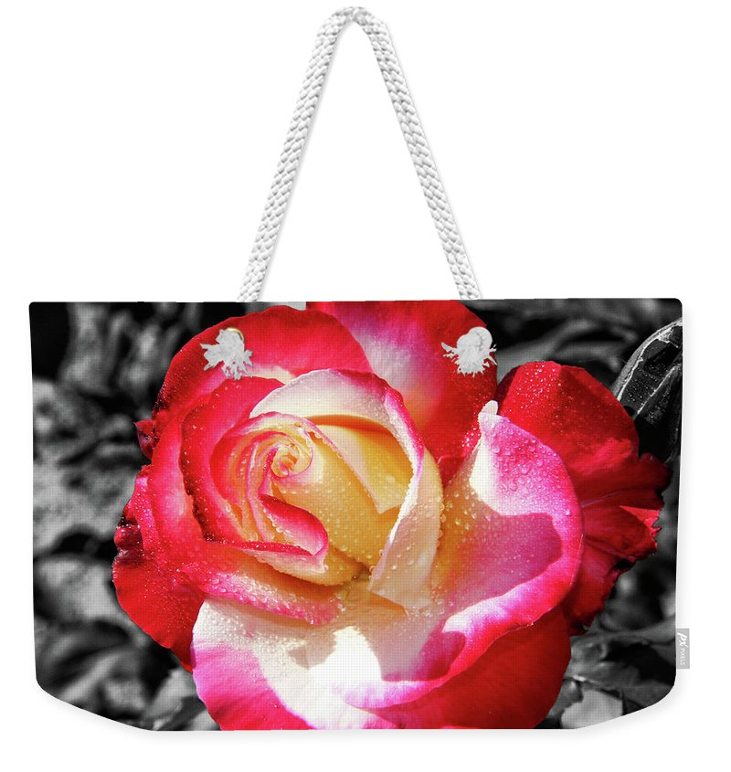 Unity Rose Weekender Tote Bag featuring the photograph Unity Rose by Mariola Bitner