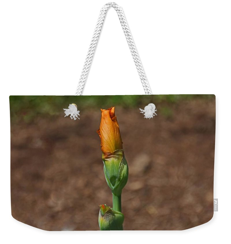 Orange Weekender Tote Bag featuring the photograph Universal Beauty by Michiale Schneider