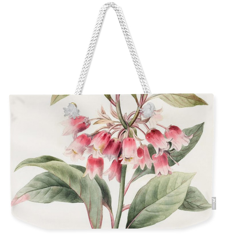 Floral Weekender Tote Bag featuring the painting Unnamed by Louise D'Orleans