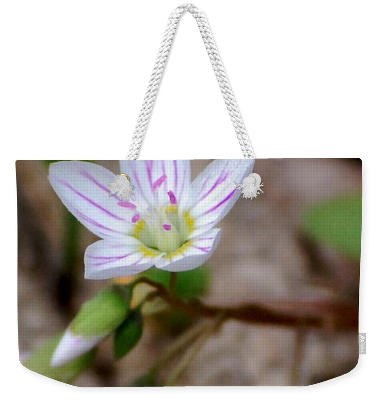 Floral Weekender Tote Bag featuring the photograph Untitiled Floral by David Lane