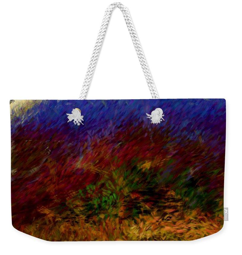 Digital Painting Weekender Tote Bag featuring the digital art Untitled 4-11-10 by David Lane