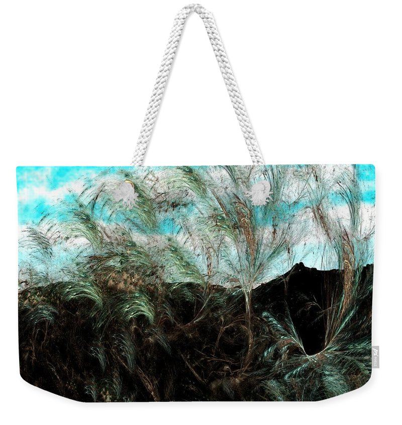 Digital Photograph Weekender Tote Bag featuring the digital art Untitled 9-26-09 by David Lane
