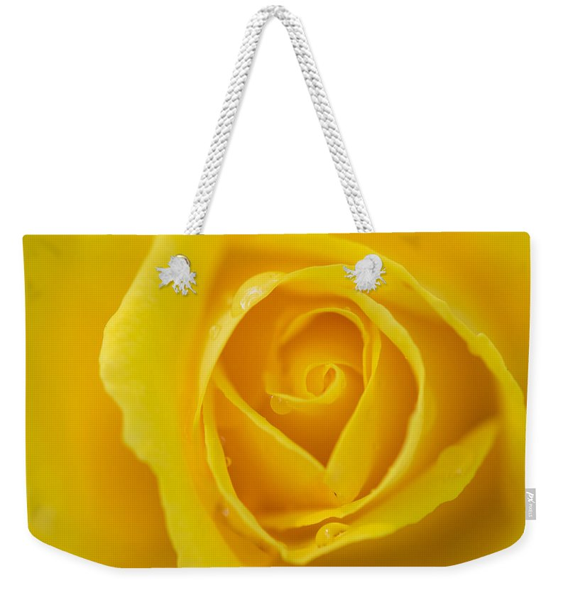 Flowers Weekender Tote Bag featuring the photograph Up Close Yellow Rose by Robert VanDerWal