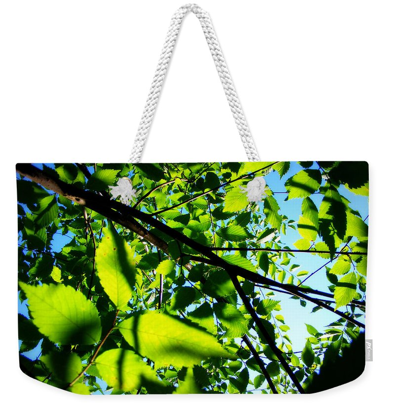 Leaves Weekender Tote Bag featuring the photograph Up by Mandy Shupp