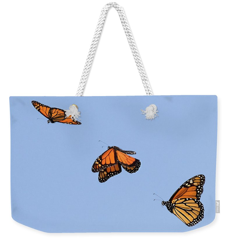 Butterfly Weekender Tote Bag featuring the photograph Up Up And Away by Art Cole