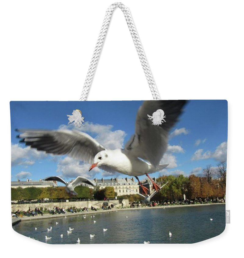 Bird Weekender Tote Bag featuring the photograph Upclose And Personal by Christin Brodie
